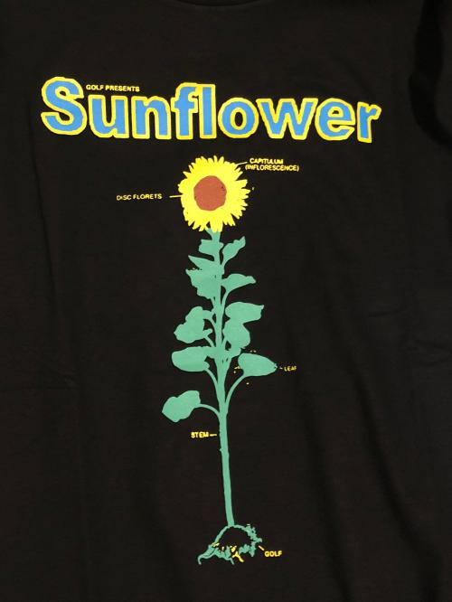 small resolution of sunflower detailed diagram