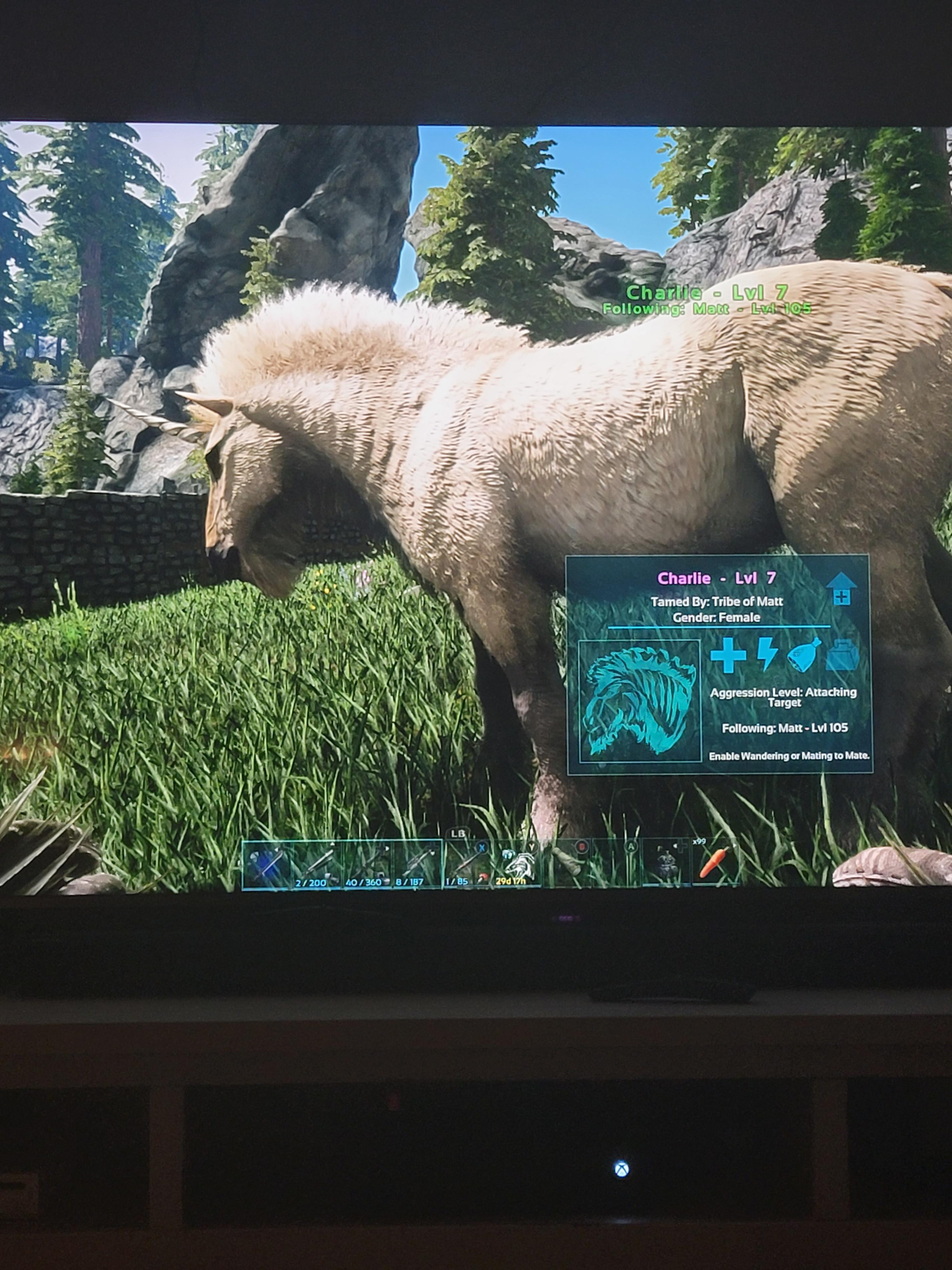 Ark Unicorn Taming : unicorn, taming, Finally, Found, Unicorn!