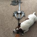I Have A Great Friend Who Made Me A Halloween Town Keyblade Beyond Fucking Stoked Feat Mo And Sora First Time Post Gaming