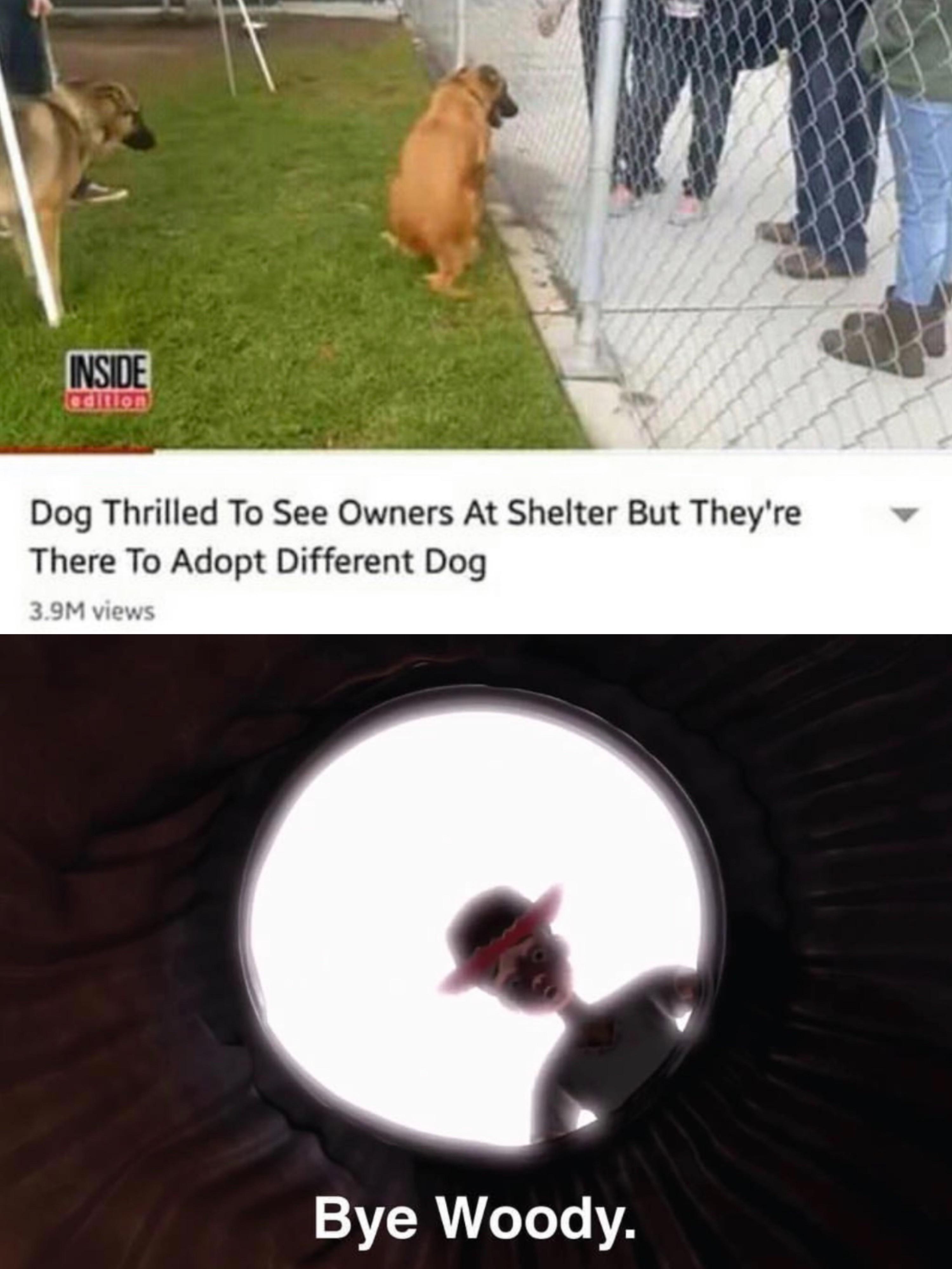 Bye Dog Meme : Woody, Memes