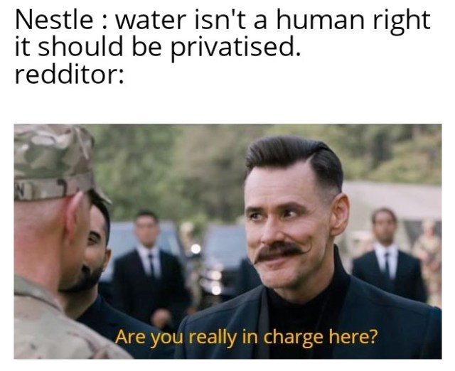 Redditors Call for a Nestlé Boycott Through Memes - visionviral com