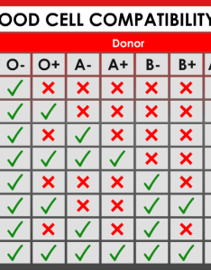 Blood cell compatibility table also coolguides rh reddit