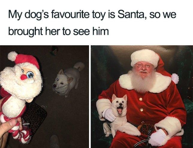 merry christmas meme funny