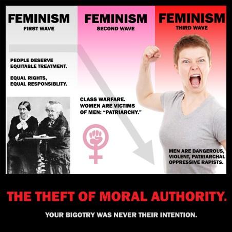 Image result for toxic feminism meme