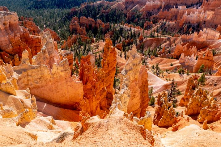 Bryce Canyon National Park (Photo credit to Barth Bailey) [6000 x 4000]