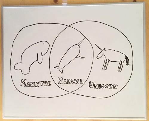small resolution of animals venn diagram funnycharts