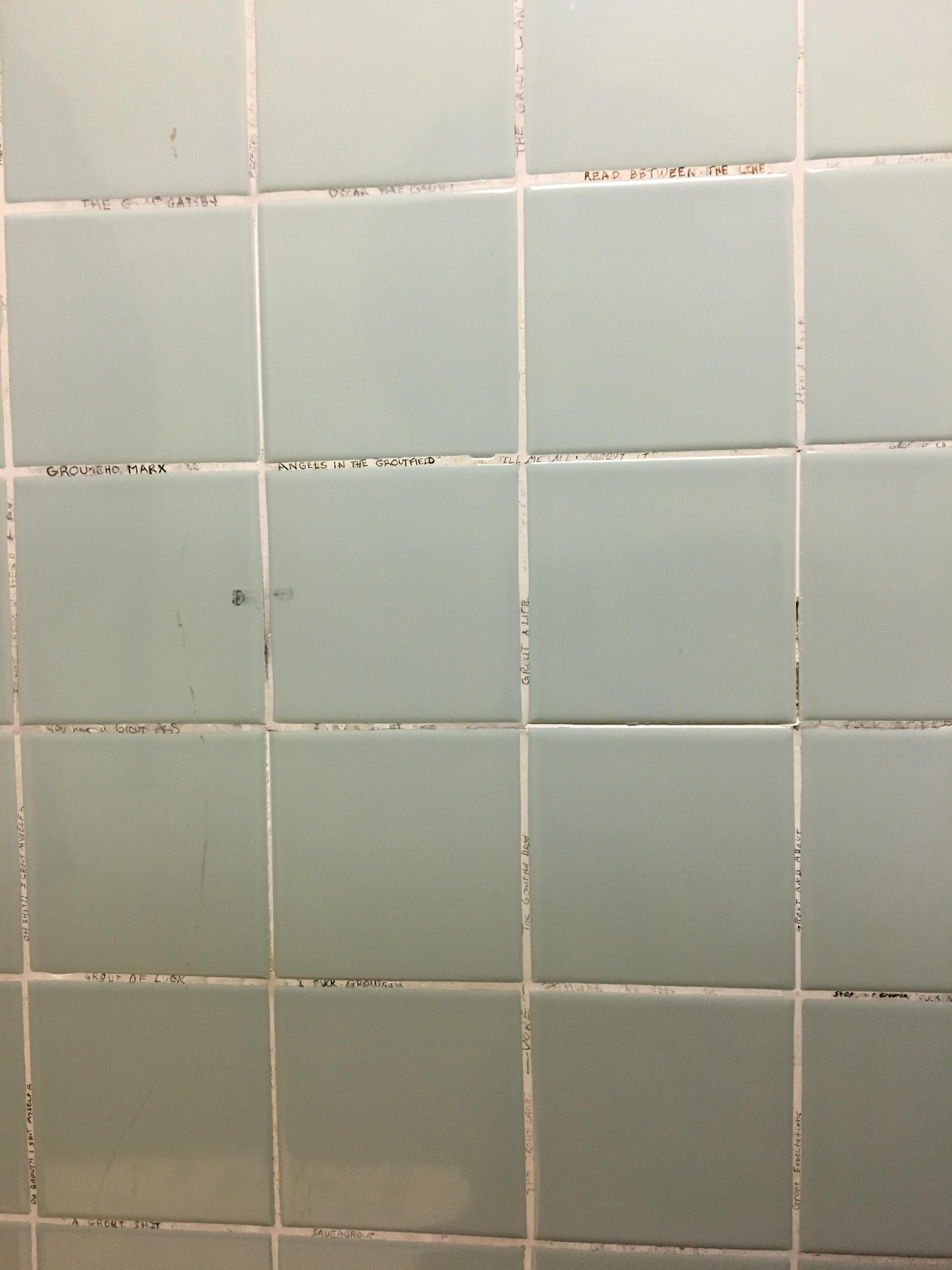 Bathroom Grout The Graffiti In This Bathroom Is Limited To Grout Puns On The
