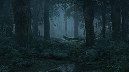 I was able to extract the new forest background from the Mondo website : thelastofus