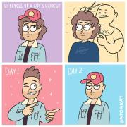 funny lifecycle of guy