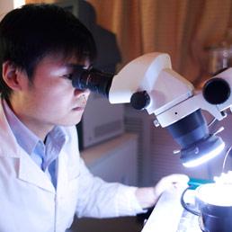 AAA cercasi 1000 professionisti per accellerare lo sviluppo in Cina (Corbis)