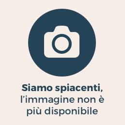 https://i0.wp.com/i.res.24o.it/images2010/SoleOnLine5/_Immagini/Notizie/Italia/2013/04/camera-votazione-lapresse-258.jpg