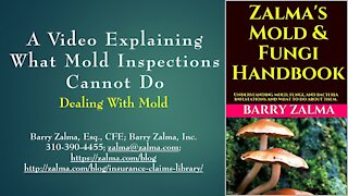 A Video Explaining What Mold Inspections Cannot Do