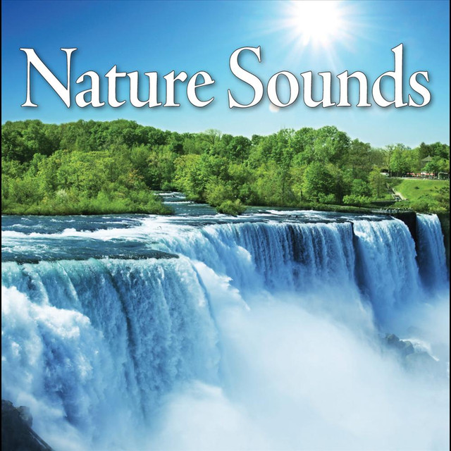 Nature Sounds Relaxation Music for Sleep Meditation