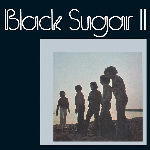 Don't You Worry About a Thing. a song by Black Sugar on Spotify