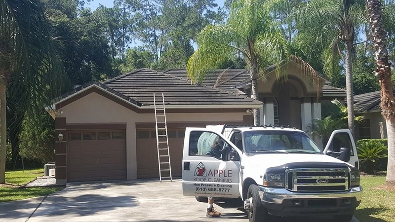Tile Roof Cleaning In Tampa Florida Area Tile_r11