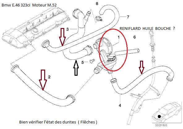 [ BMW e46 323 ci M52 an 2000 ] Plusieurs question après