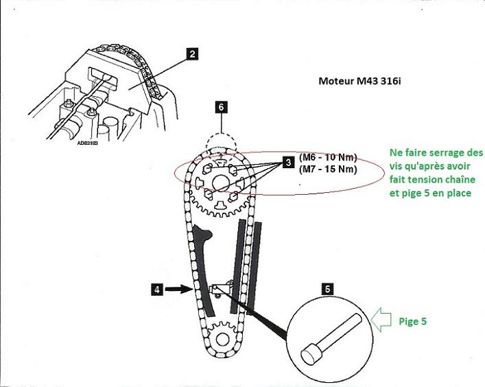 [ bmw e36 316i m43 an 1998 ] Modèle de culasse et calage