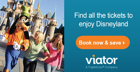 Viator Disneyland