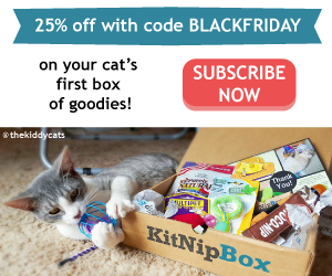 KitNipBox_BlackFriday
