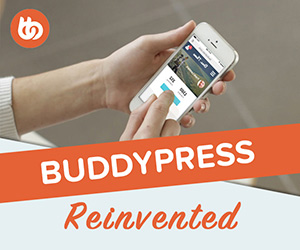 Boss BuddyPress theme