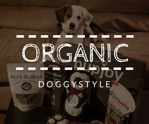 Organic All Natural Dog Boxes