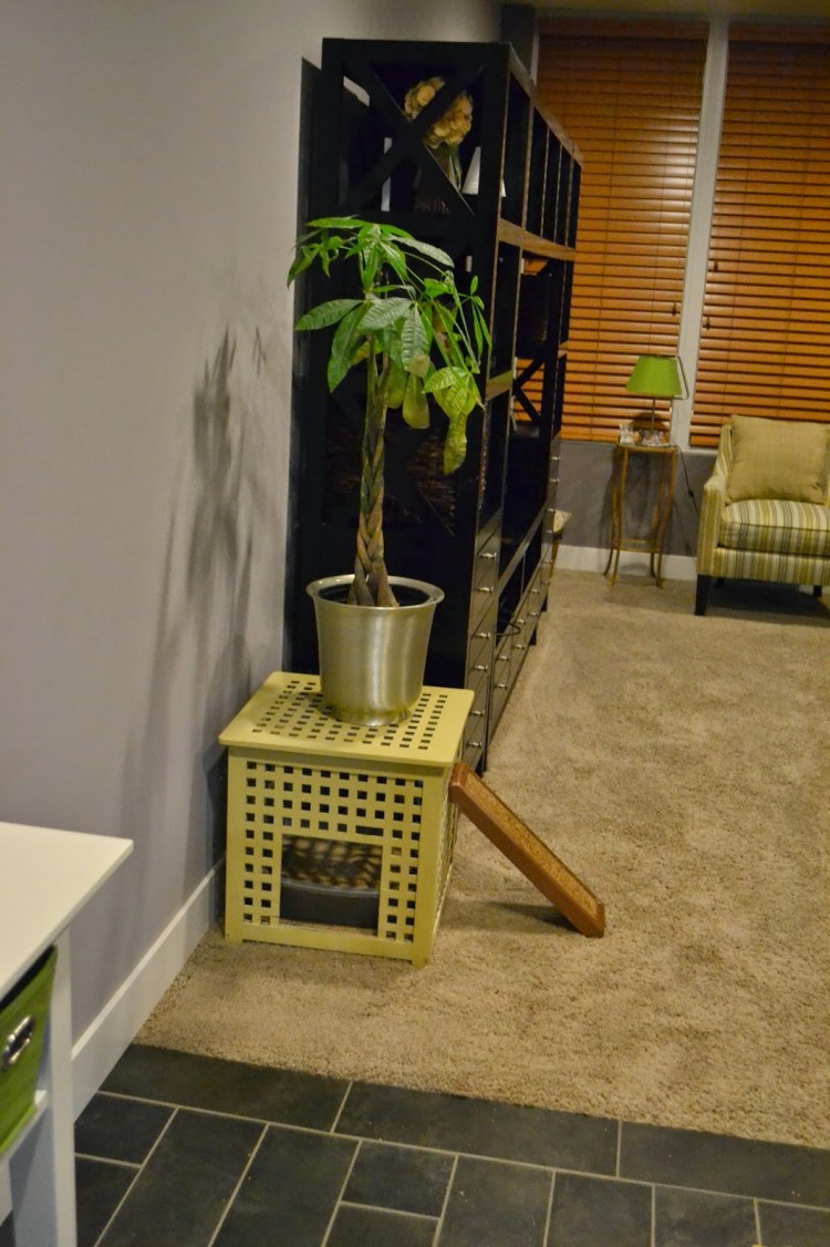 11 Simple DIY Kitty Litter Boxes And Loos From IKEA Units  Shelterness
