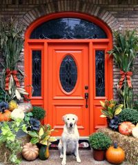 26 Bold Front Door Ideas In Bright Colors - Shelterness