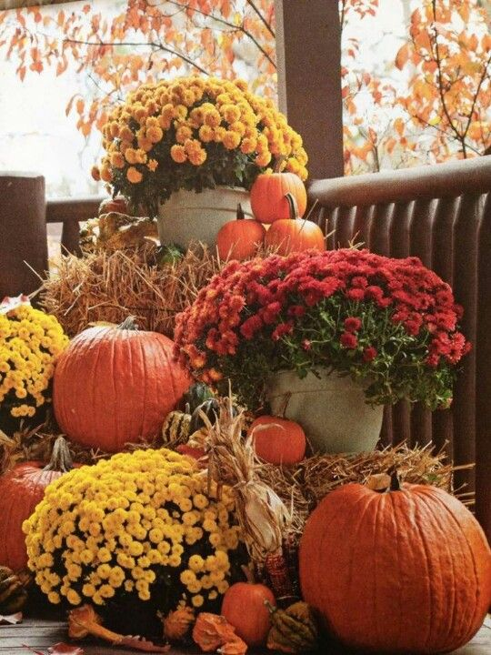 Fall Farm Wedding Ideas
