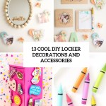 13 Cool Diy Locker Decorations And Accessories Shelterness