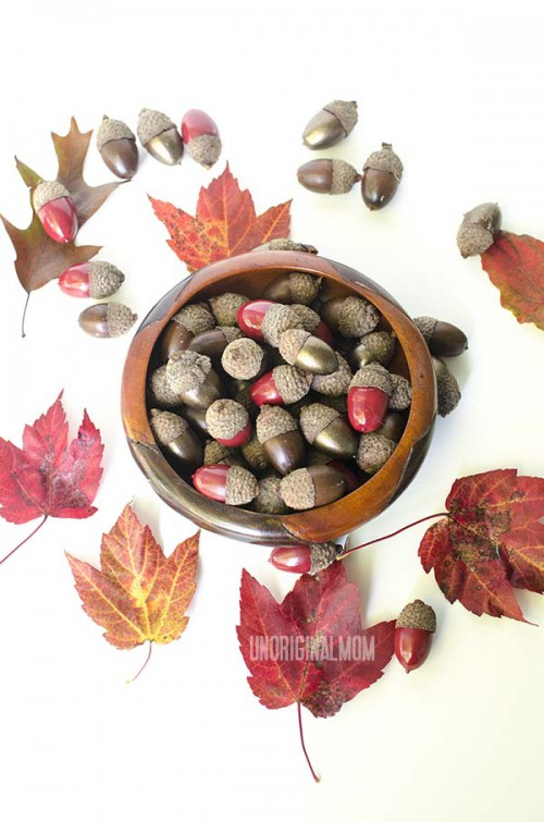 15 DIY Acorns And Nuts Crafts For Fall And Thanksgiving  Shelterness