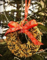 11 DIY Birdseed Ornaments For Christmas - Shelterness