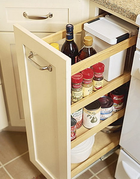 pull out kitchen cabinet soap dispenser parts 67 cool drawers and shelves shelterness it s great to have spices oils on hand without occupying coutertops roll outs