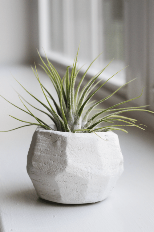 15 Trendy DIY Geometric Planters You Can Easily Make  Shelterness