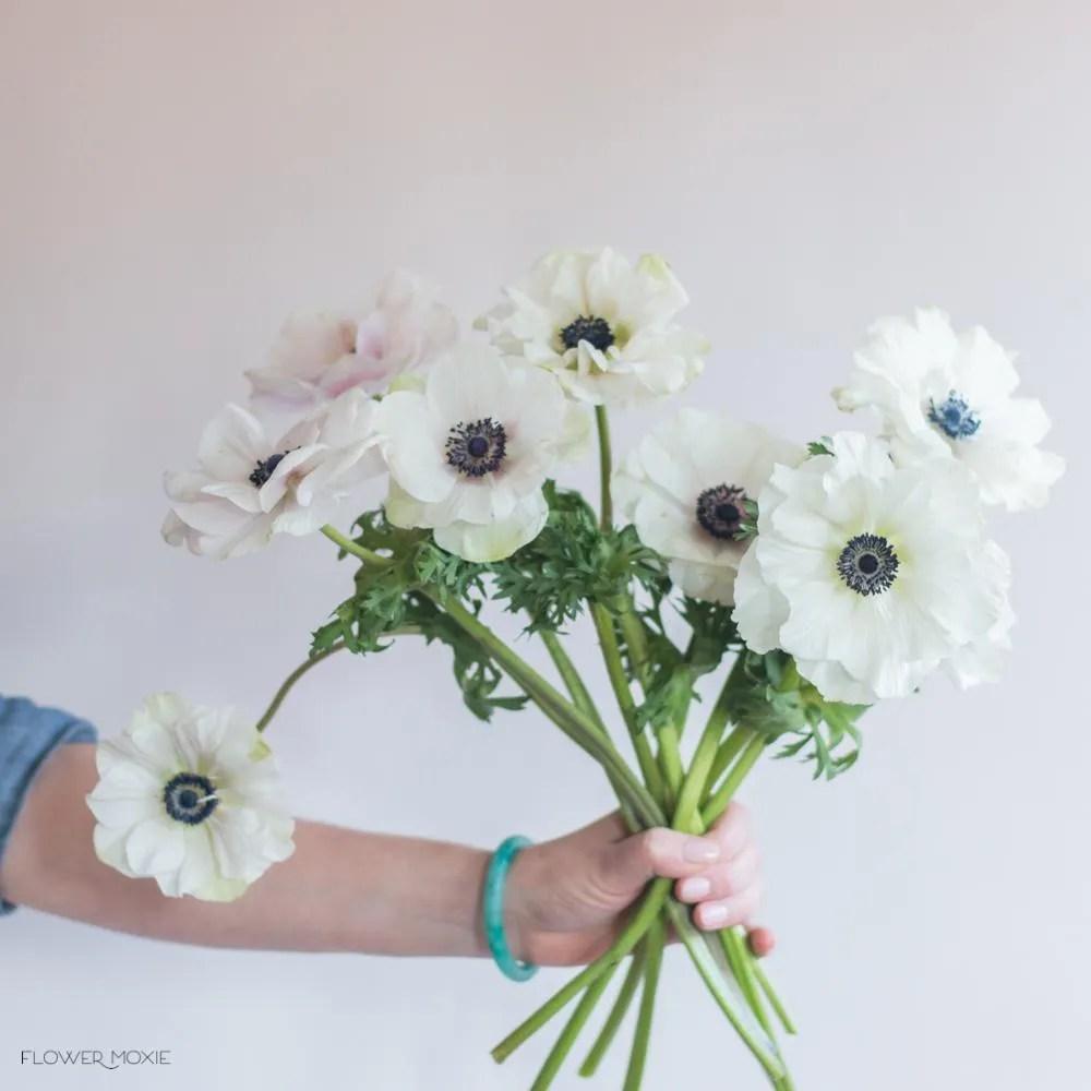 bulk flowers online fresh