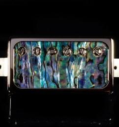 abalone [ 1280 x 1280 Pixel ]