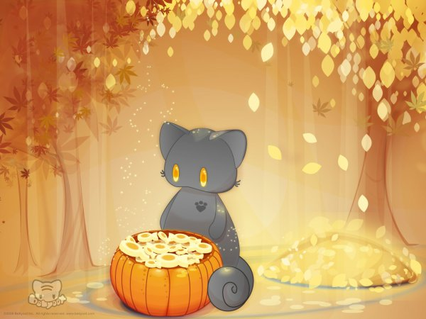Cat Fall Wallpaper Animaux Kawaii Images Anim 233 Mangas Et Autres