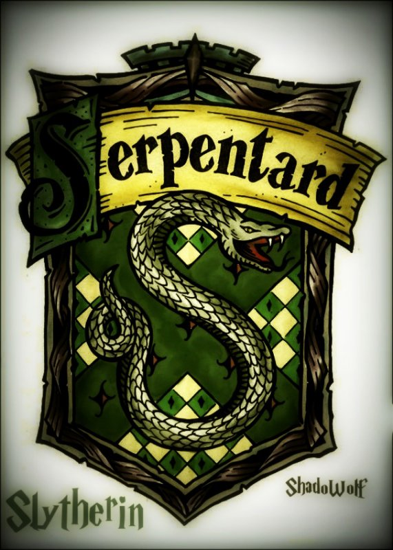 Serpentard  The world of Harry Potter in French