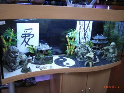 dco aquarium chinois