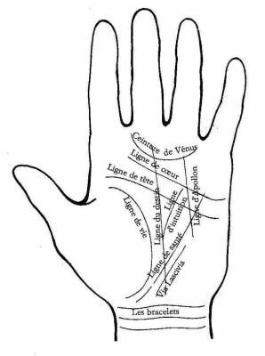 Lire Dans Les Lignes De La Main : lignes, Ligne, Narrateur, Omniscinet, C'est, 'fond