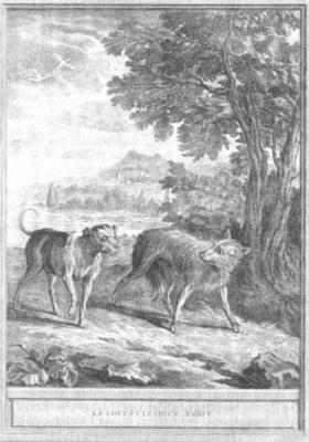 Le Loup Et Le Chien Analyse : chien, analyse, Esope, Phèdre, Fontaine,, Chien, (-6e,, -1er,, 17e),, Etude, Comparée, Fiches, Français
