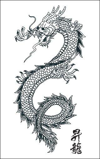 Année Du Dragon Calendrier Chinois : année, dragon, calendrier, chinois, L'année, Dragon,, Calendrier, Chinois., Bonobo