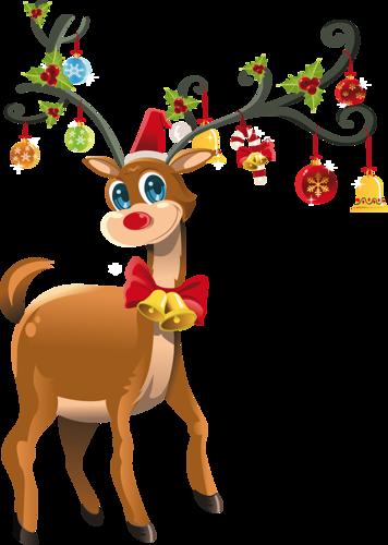 Le Renne Au Nez Rouge : renne, rouge, Rudolph,, Petit