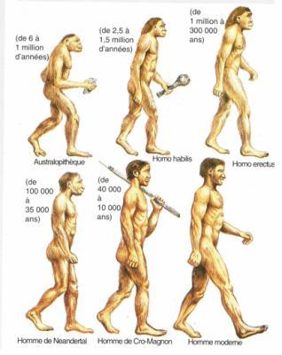 Les Premiers Hommes Sur Terre : premiers, hommes, terre, Premiers, Hommes, Un-avenir-pour-la-Terre
