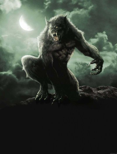 Loup Garou Harry Potter : garou, harry, potter, Garou, Welcome, Magical, World, Harry, Potter