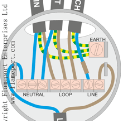 Domestic Lighting Wiring Diagram 2007 Ford Focus Electrical - What Can I Use To Manage The Wires When Replacing A Looped Ceiling Rose Light ...