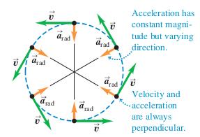 Ferris Wheel Diagram Of Force Kinematics Uniform Circular Motion Physics Stack Exchange