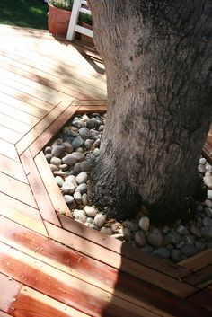 Framing Fill Drained Rocks Or Gravels Around Tree Base