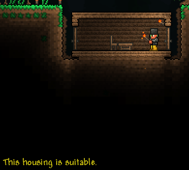 Terraria Console This Is Not Valid Housing What Is