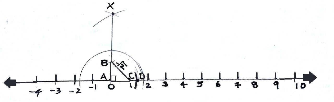 irrational number diagram human skeleton worksheet discrete mathematics numbers on the line we can construct a right triangle with its each leg as 1 unit then hypotenuse would be 2 units and point
