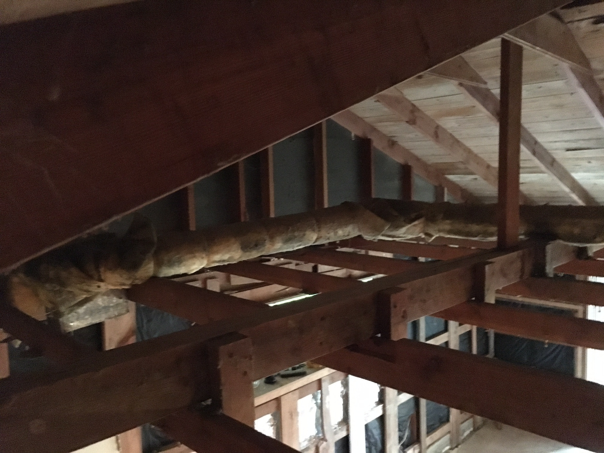 Removing A Ceiling Joist